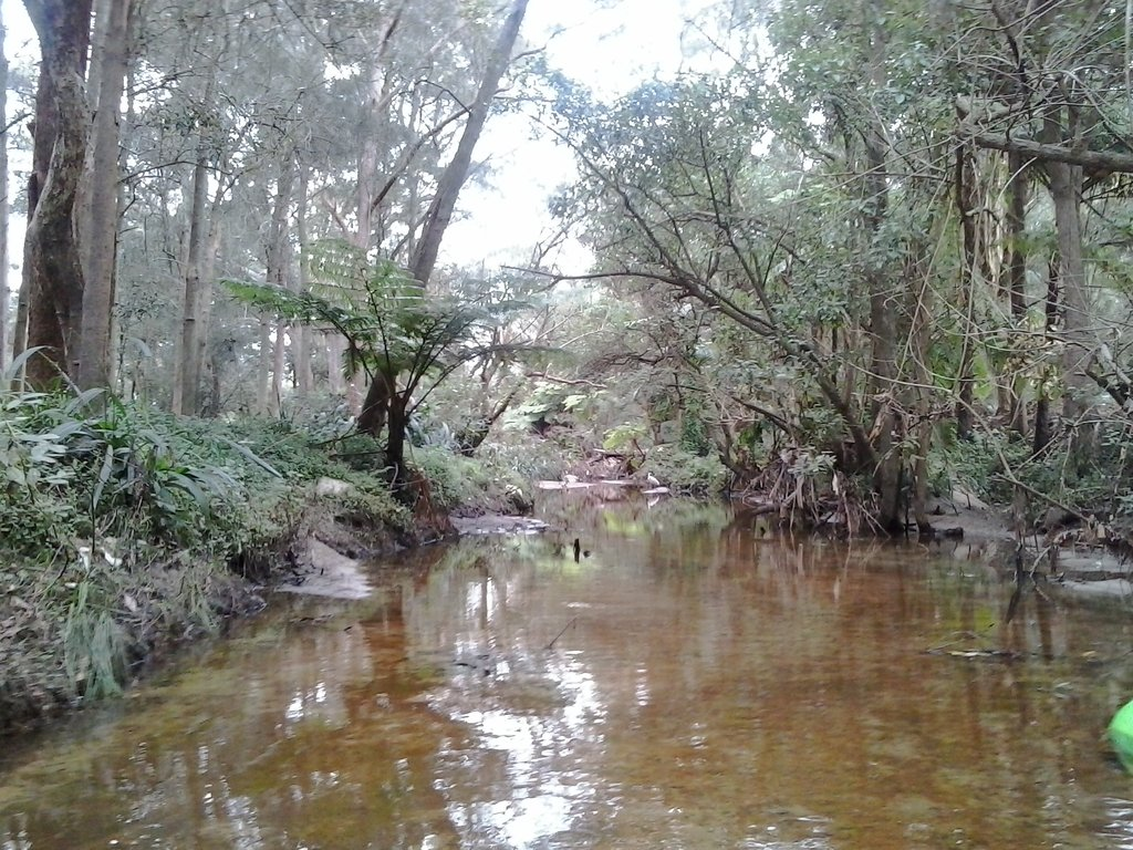 South Creek from Narrabeen Lake