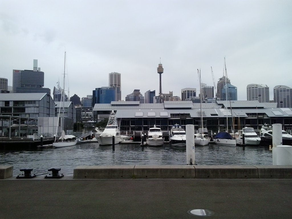 Pyrmont to Balmain walk and Ferry Ride to the city.