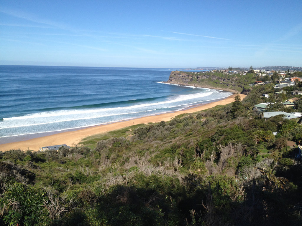 Northern Beaches Tour