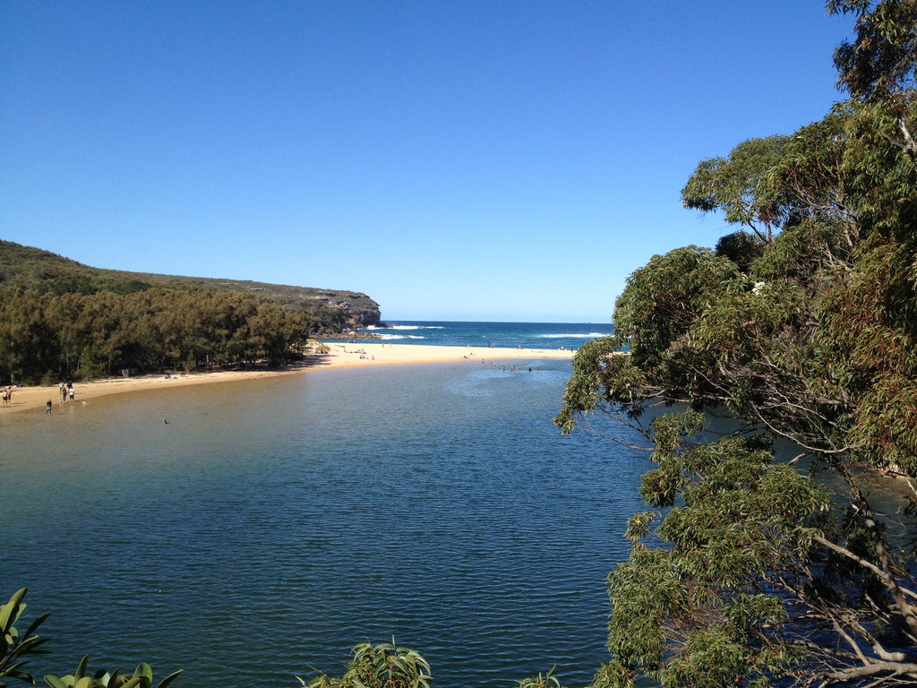 Part of the coastal walk in the Royal National Park