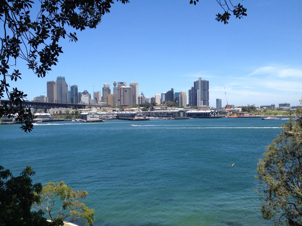 Lavender Bay to Coal Loader Loop