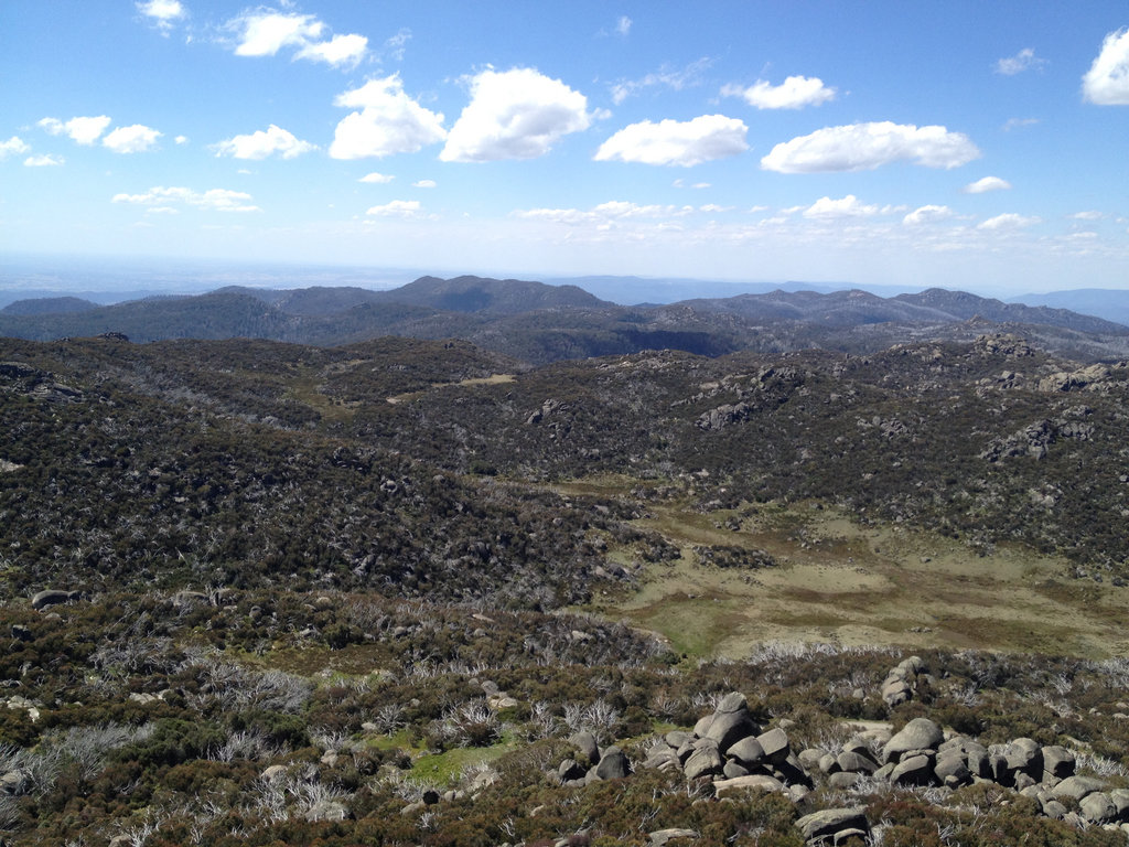 Mount Buffalo - The Horn Track