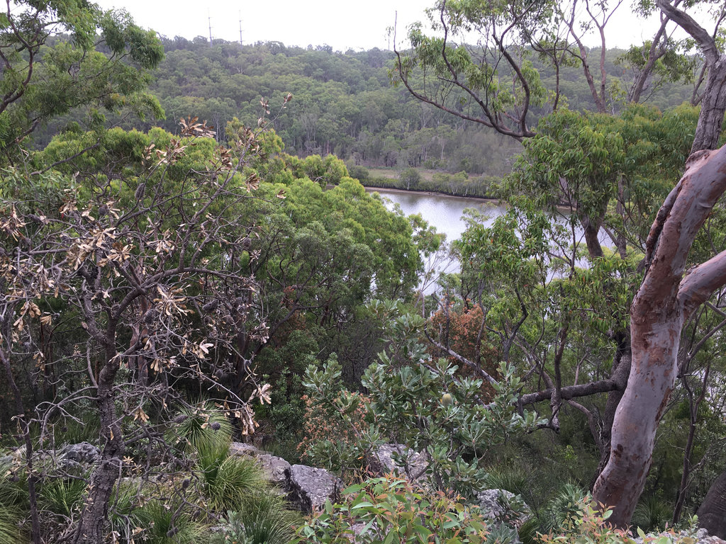 Along the Georges River